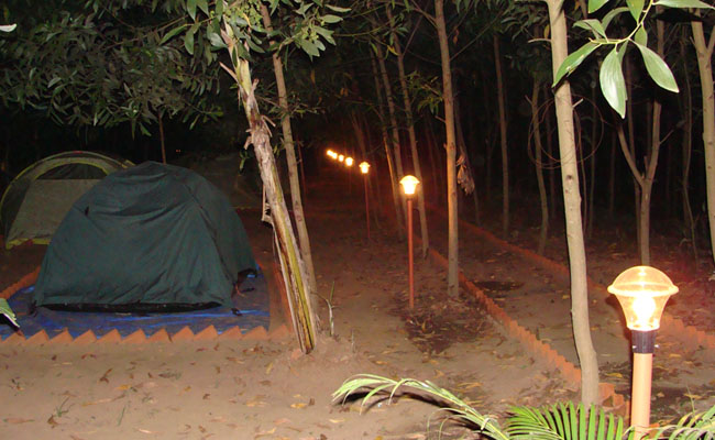 dew-drops-jungle-c&-site-4 & Dew Drops | Dandeli Resorts and Homestay
