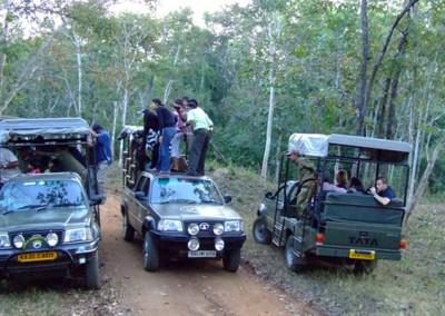 Jeep Jungle Safari In Dandeli
