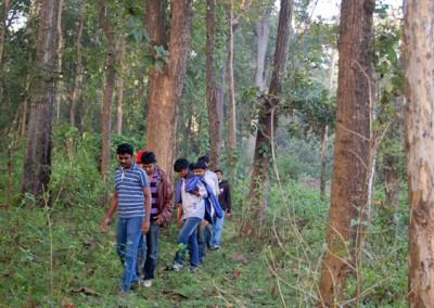 Jungle Trekking In Dandeli